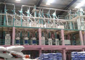 manufacturing in Jigawa, Nigeria