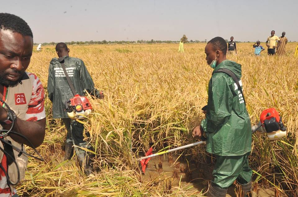 Jigawa_Agriculture_Investment
